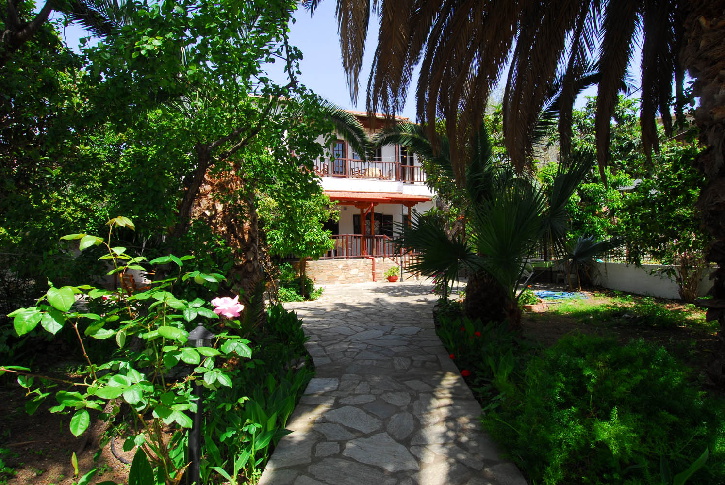 Μενέλαος Διαμερίσματα Πήλιο / Menelaos Apartments Pelion